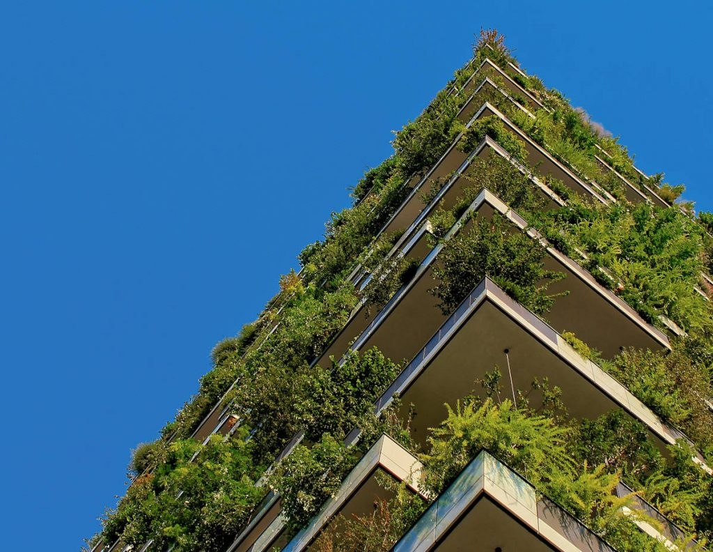 Nachhaltigkeit in der IT